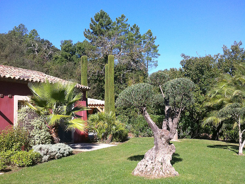 Creation de jardins jardinier paysagiste saint tropez - Creation jardin mediterraneen saint paul ...