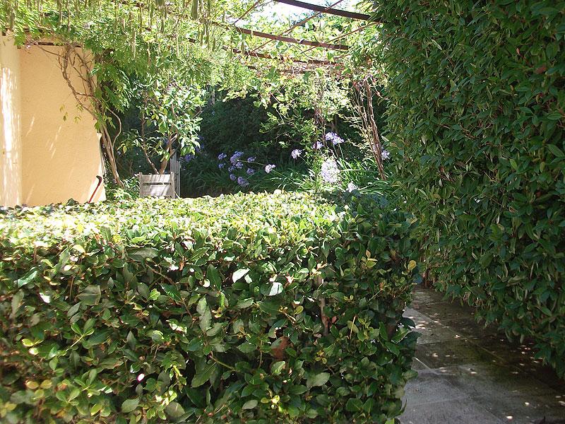 Entretien de jardins jardinier paysagiste saint tropez for Entretien jardin 27