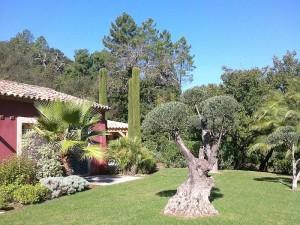 Site jardin paysager for Entretien jardin tarbes